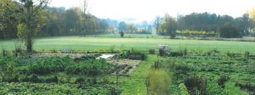 Jardin Partagé du Petit Marais à Monsures